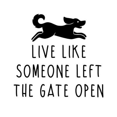 Live Like Someone Left the Gate Open Wine Glass 19 oz