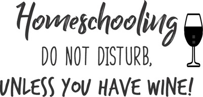 Leatherette 20 oz Homeschooling do not disturb unless you have wine Insulated Tumbler