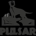 Horizon Pulsar - GRAIN FREE! 25LB/11.4KG