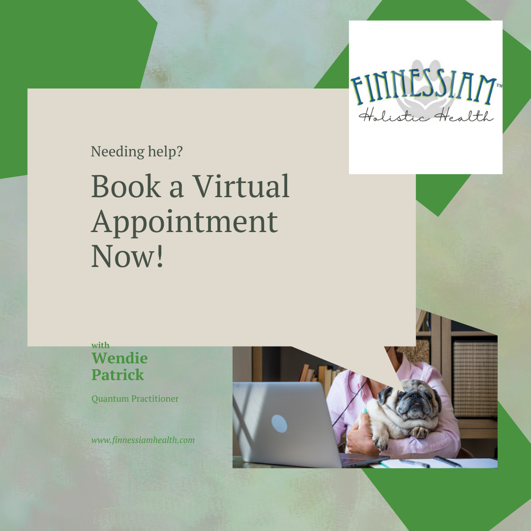Finnessiam; Book Virtual Appointments - info and deposit.