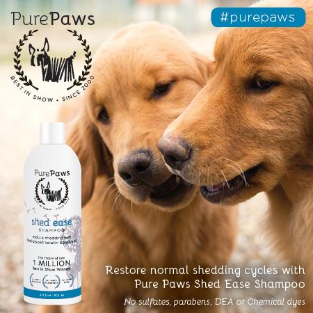 Pure Paws SLS FREE Shed Ease Shampoo 16oz