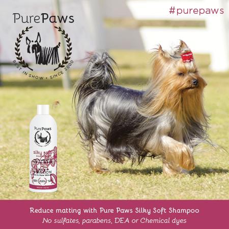 Pure Paws SLS FREE Silky Soft Shampoo 16oz