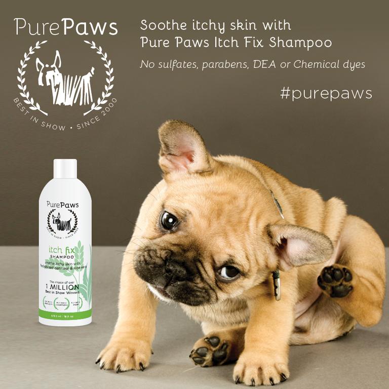 Pure Paws SLS FREE Itch Fix Shampoo 16oz