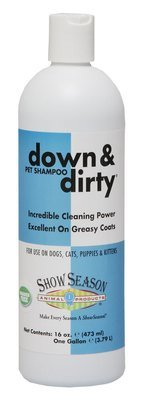 Down & Dirty® Shampoo 16oz