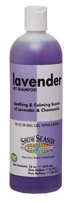 Lavender Shampoo 16oz