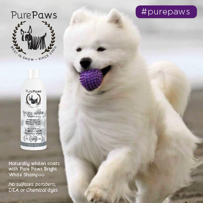 Pure Paws SLS FREE Bright White Shampoo 16oz