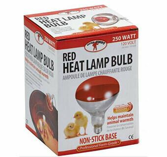 Red Bulb for Brooder Lamp - 250 Watt