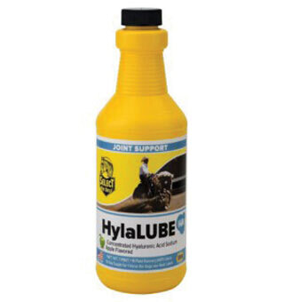 Hylalube Concentrated Hyaluronic Acid - 1 pint