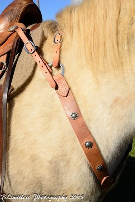 Buckaroo Leather Nevada Style Breast Collar
