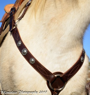 Buckaroo Leather All Around Breast Collar