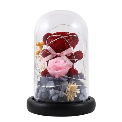 Red teddy & preserved flower Dome