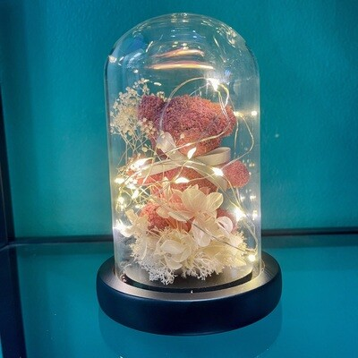 Pink teddy & preserved flower Dome