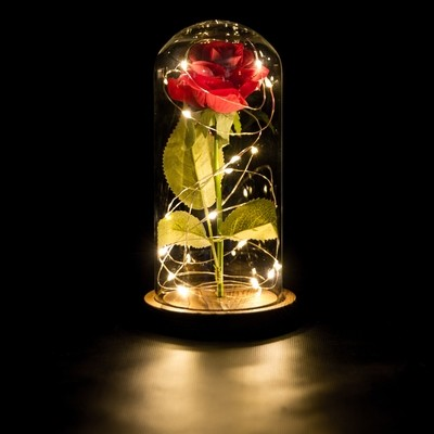 Forever Rose in Glass Dome