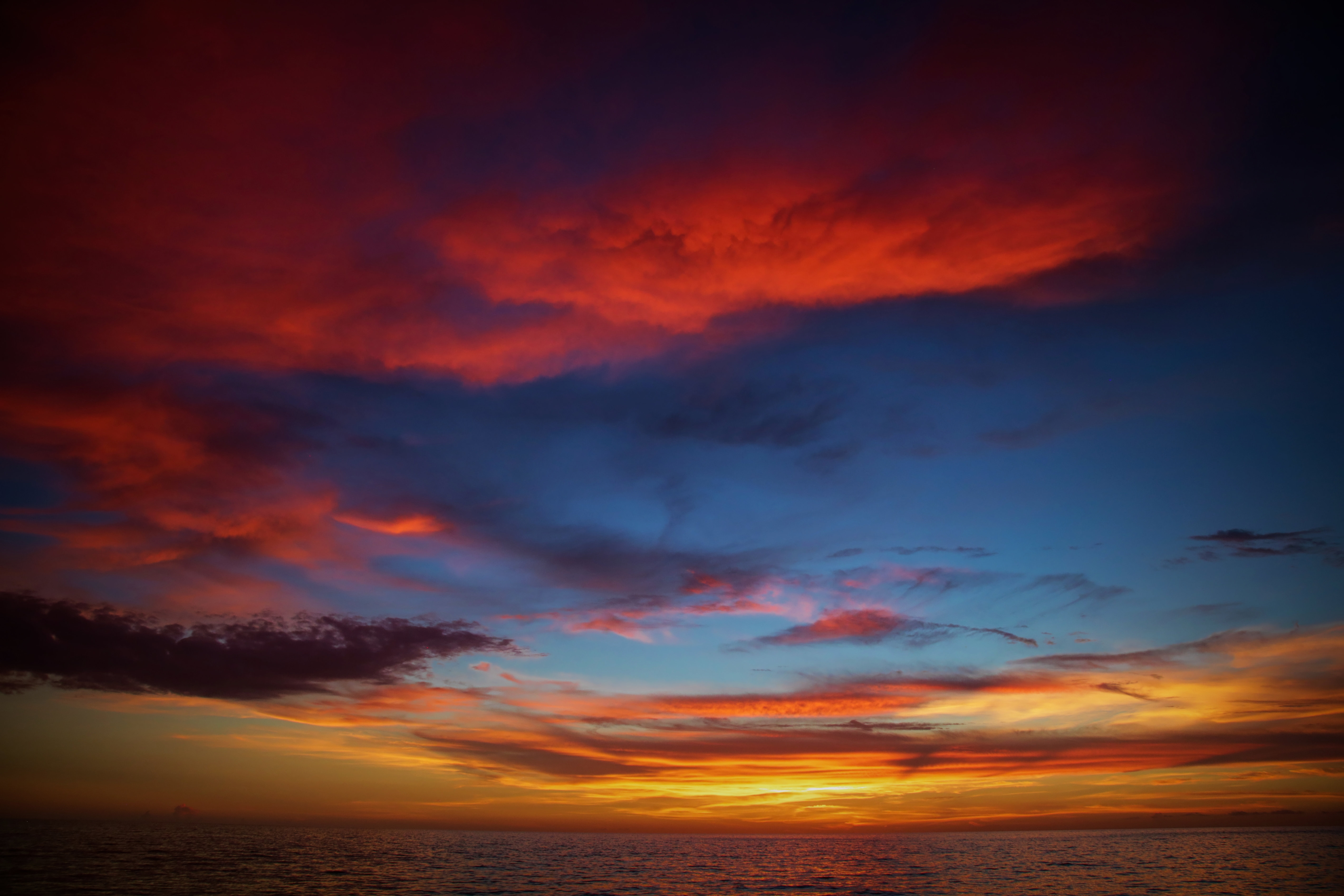Colors of Naples - Gulf Sunset CON_ALU_001