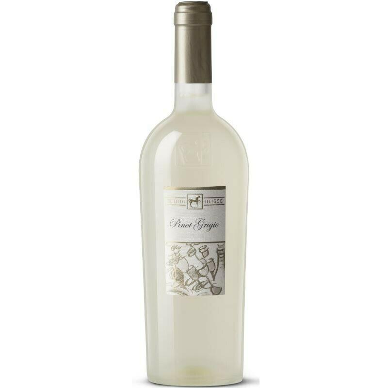 Tenuta Ulisse Pinot Grigio 11+1 GRATIS
