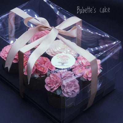 Clear Cupcake Set Box Container