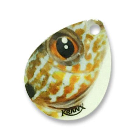 Sunfish *Live Image* (3-pack Nickel) 00207