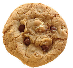 Bumzy's Classic Chocolate Chip with Walnuts