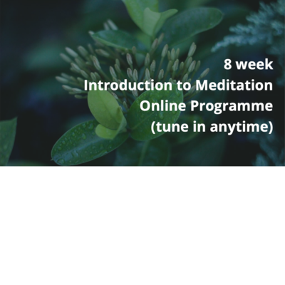 Introduction to Meditation 8 Week Programme