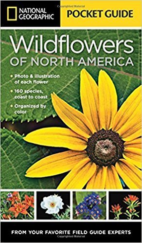National Geographic Pocket Guide to Wildflowers of North America