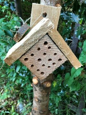 Mini bee hotel, Bee Kind wooden tag and wildflower seeds