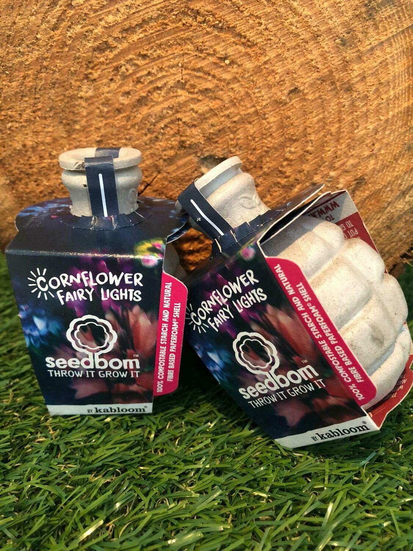 2 x Cornflower Fairy Lights Seedboms