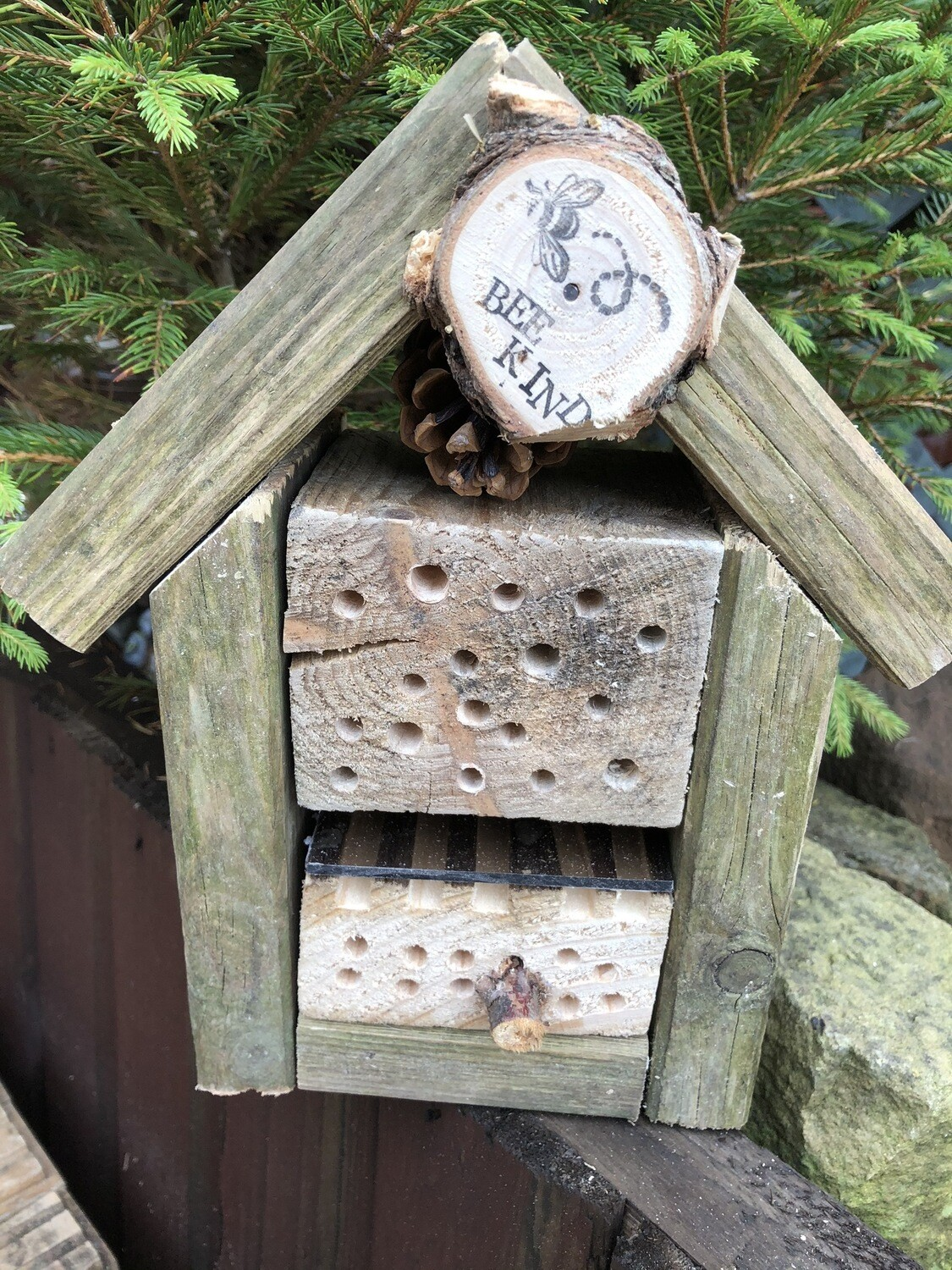 Solitary Bee Hotel With Viewing Drawer