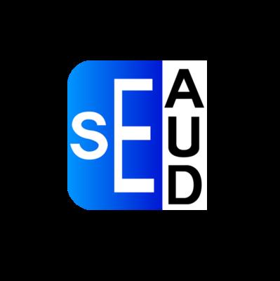 SE Auditoría
