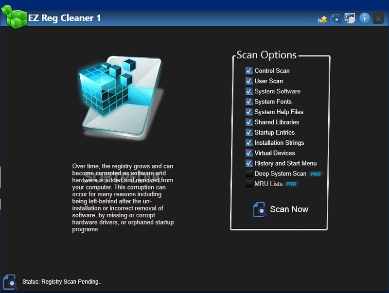 EZ Reg Cleaner Pro