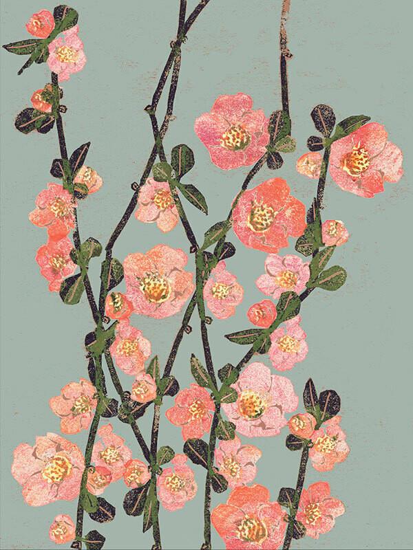 Postkarte Zierquittenblüte