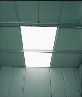 Treco Shed Skylight Panel - 10'