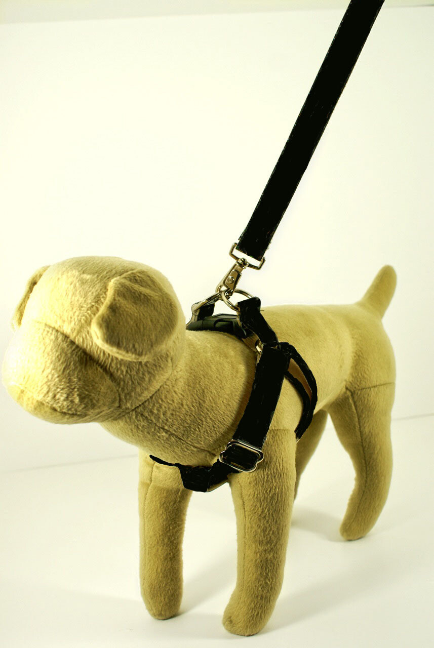 Eco Friendly Bamboo Single Layer Step-In Dog Harness - Midnight