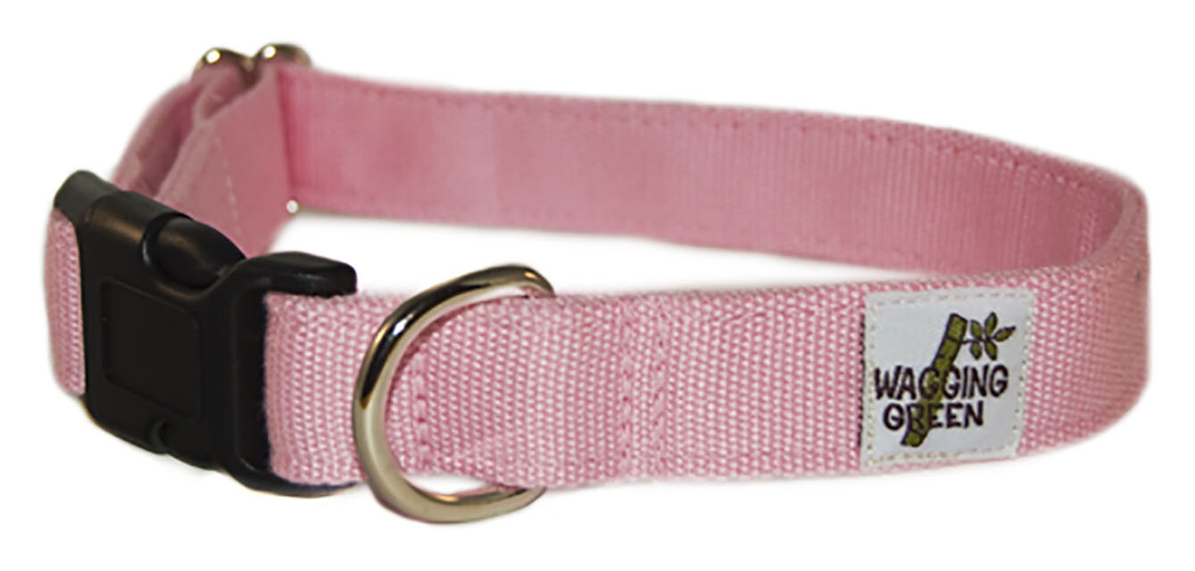 Eco Friendly Bamboo Single Layer Dog Collar - Seashell