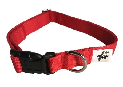 Eco Friendly Bamboo Single Layer Dog Collar - Berry