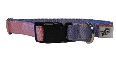Eco Friendly Bamboo Eco Hip Series Dog Collar - Summer