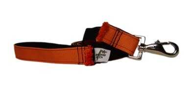 Eco Friendly  Bamboo Eco Hip Series Dog Leash - Spooky