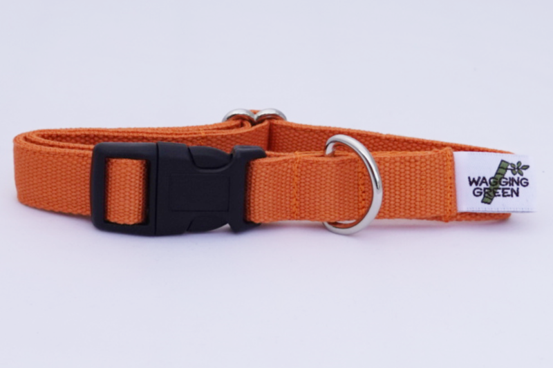 Eco Friendly Bamboo Double Layer Dog Collar - Falling Leaves