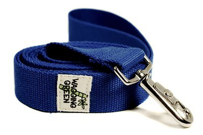 Eco Friendly Bamboo Double Layer Dog Leash - Twilight