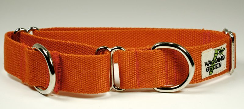 Eco Friendly Bamboo Double Layer Martingale Dog Collar - Falling Leaves