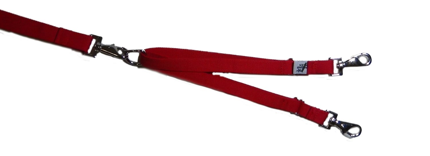 Eco Friendly Bamboo Tandem Leash Accessory - Berry