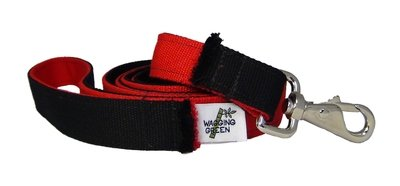 Eco Friendly  Bamboo Eco Hip Series Dog Leash - Valentine's