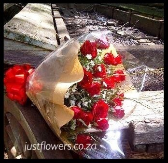 Red or White Roses Cello