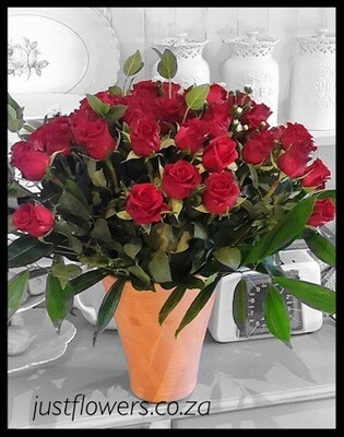 40/50/60 or 100 Red Roses