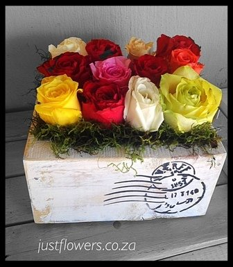 Grouped Roses