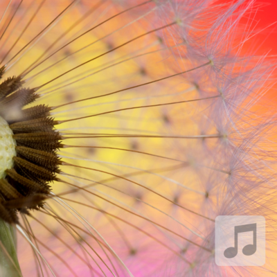 Dandelion Dream | Whimsical, Uplifting, Happy | Relaxing Music