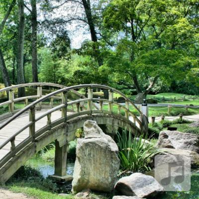 Sounds of the Tea Garden | Relaxing World Music | Meditation, Yoga