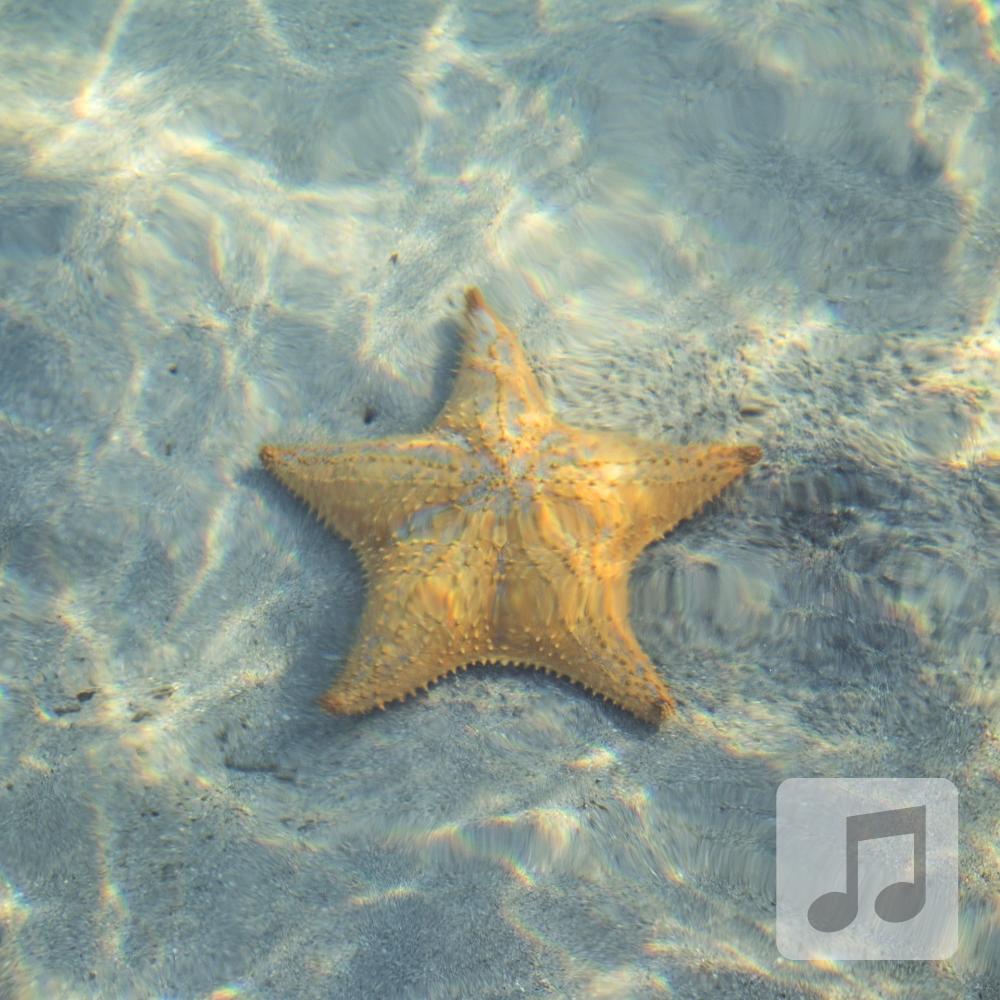 Starfish Relaxation | Delta Wave Binaural Beats Music | Sleep