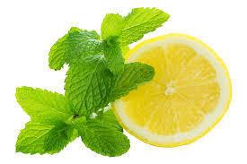 Fresh Mask - Mint & Lemon