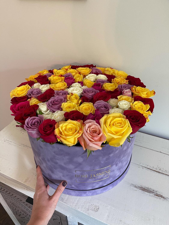 Lavender Velvet Giant! New And Trendy!