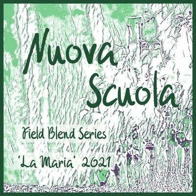 2021 Field Blend 'La Maria' - 6 Pack